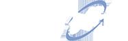 Citynet Logo Inverse