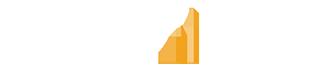 NetPulse Network Monitoring Logo