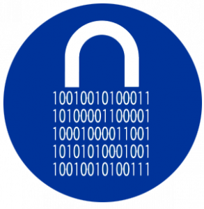 IT/Data Security Icon
