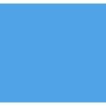 Network Segmentation Icon